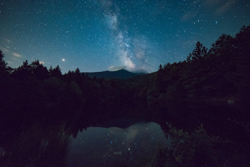 scenic-view-of-forest-during-night-time-1252869.jpg