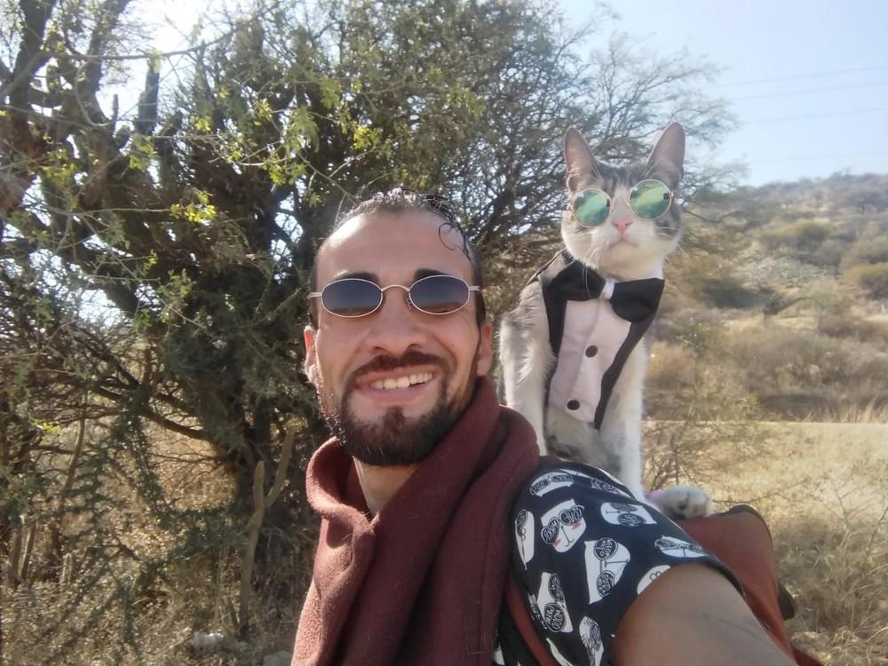 gato-mochileiro-1-.jpeg